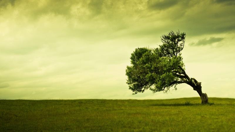 Dalle idee ai progetti: la sfida della longevità a Modena