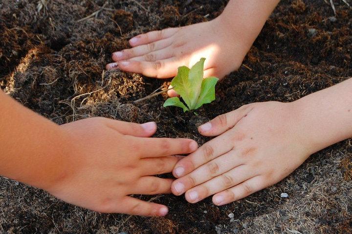 """Inaugura l'orto-giardino di """"Aggiungi un orto a tavola"""""""